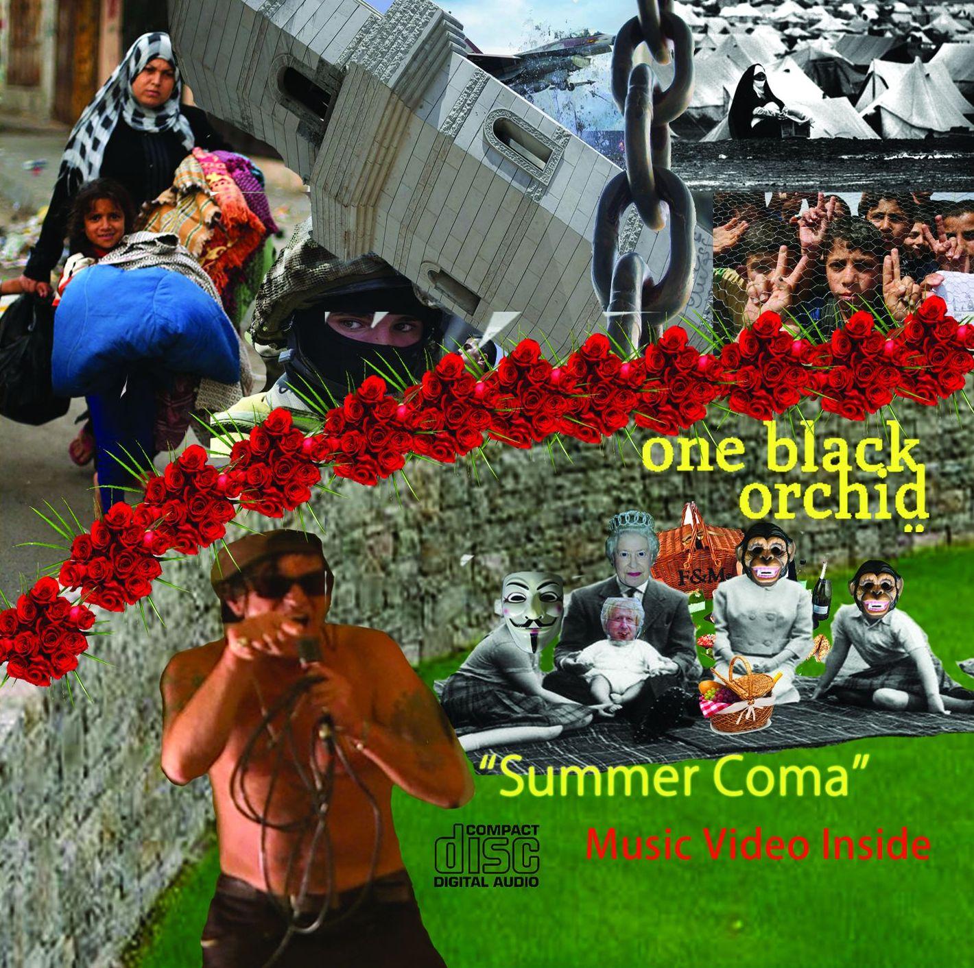 Summer Coma Indie Rock Protest Music Album
